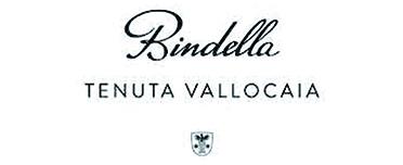 mondovino-vino-cornedo-vicenza-bindella-logo